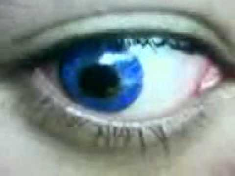 Freshlook Color Contact Lens Colorblends True Sapphire ... True Sapphire Contact Lenses
