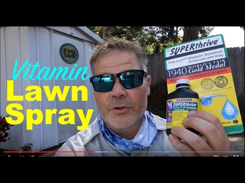SuperThrive Test + Lawn Spraying With SunJoe Electric Pressure Washer