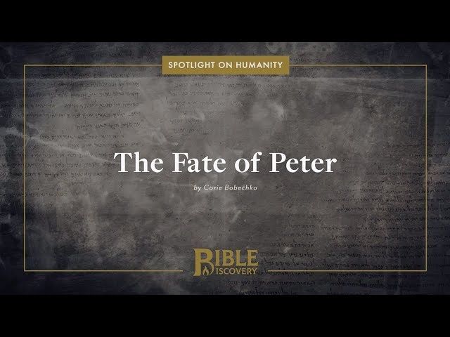 What happened to Peter after Acts? | Spotlight on Humanity | The Fate of Peter
