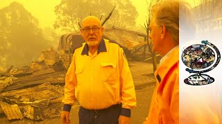 The Devastating Impact of the Australian Bushfires(Video)