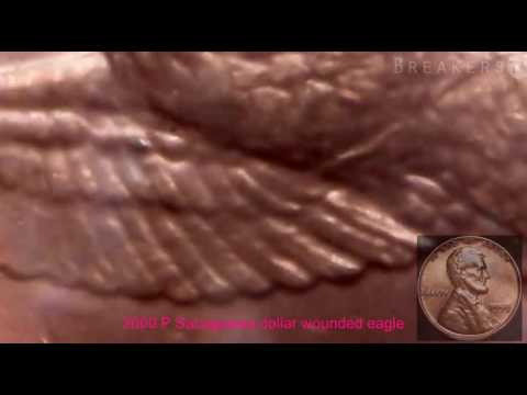 Inspecting the 2000 P Sacagawea dollar wounded Eagle Error Variety