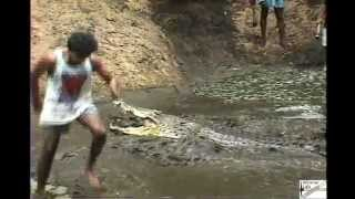 Madras Crocodile Bank - July 1997 - Digging out the pit for the giant saltwater croc 'Jaws'