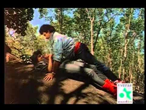 Ethanai paer siraiyil pootha chinna malar tamil movie hd video.