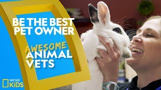 Be the Best Pet Owner   Awesome Animal Vets