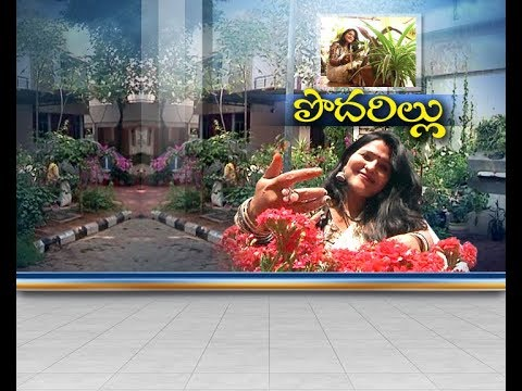 Women Interest on Gardening   with Family Support   Hyderabad