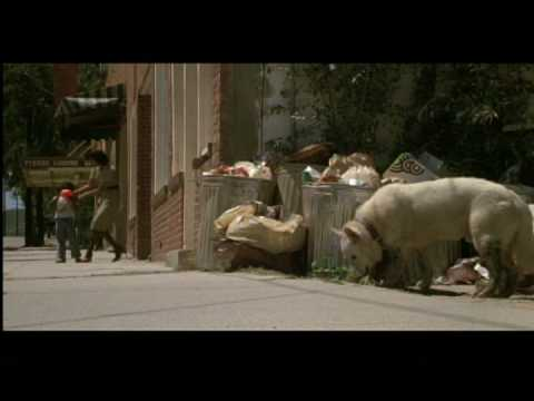 White Dog (1982) Theatrical Trailer