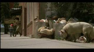 White Dog (1982) Theatrical Trailer