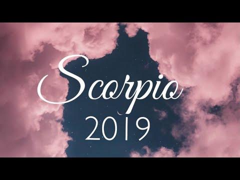 Scorpio 2019 Tarot Forecast |  Expect a Miracle!