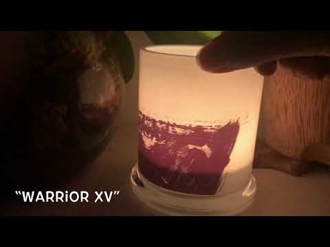 Candle Art By Sarah Jane Adelaide Artist - Warrior XV