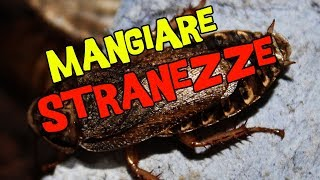 MANGIAMO STRANEZZE DAL LUSSEMBURGO