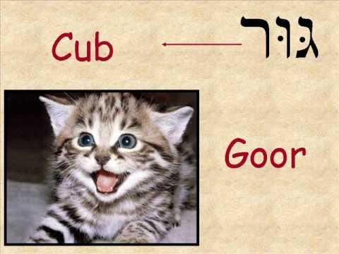 Hebrew vocabulary cards - Torah Family Living