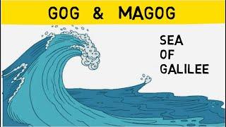 The Sea of Galilee Defines Gog and Magog - Sheikh Imran Hosein Animated