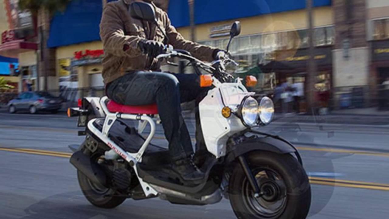 New 2016 Honda® Ruckus® Scooter For Sale in Jacksonville near St ...