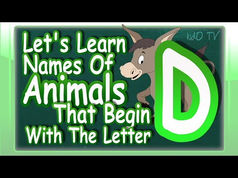 Animals Names In English That Begin With The Letter D | Learn Animals Names With Pictures | kidO TV