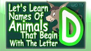Animals Names English Begin Letter