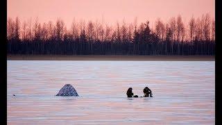 Рыбалка у дома