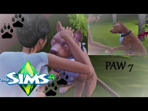 NEW EMPLOYEE!|JUST BUSINESS:An urban Cinderella series-THE SIMS 4 CATS & DOGS #7