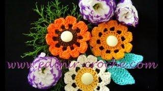 Aula de flores em crochê por Edinir Crochê