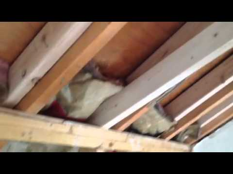 Framing A Cathedral Ceiling Of Existing Roof And Layout