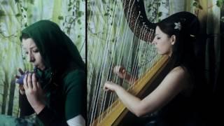 Sacred Grove / Lost Woods (from The Legend of Zelda series) [Koji Kondo] // Amy Turk, Harp/Ocarina