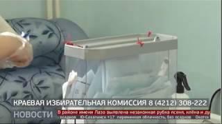 Голосование дома. Новости. 29/06/2020. GuberniaTV