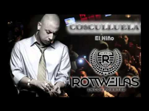 Cosculluela no piensas en mi lyrics