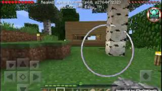 Minecraft Survival [2]