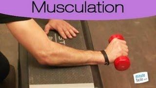 Exercises pour renforcer les avant-bras et poignets