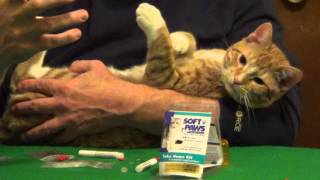 Dog and Cat Nail Caps - Soft Paws