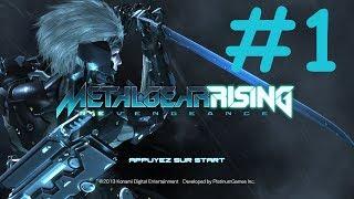 [PC] Metal Gear Rising : Revengeance - Episode 1 | Gameplay FR