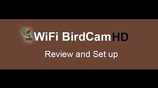 WiFi Birdhouse Camera Review and Setup