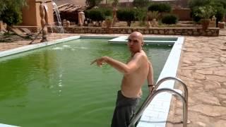 la piscina d agua verde