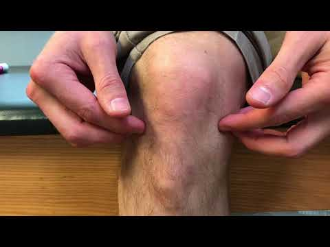 Knee Pain Types Explained | Royersford, PA | Limerick, PA