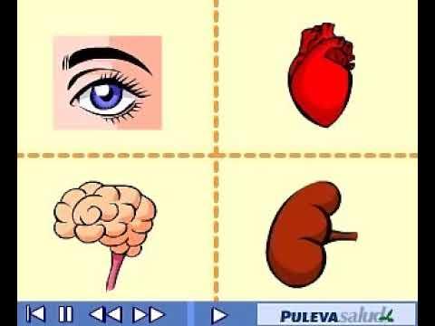 video didáctico diabetes