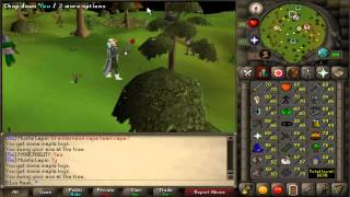 Old School Runescape Woodcutting Guide! 1-99 | Best Xp Methods | Best Money Methods |
