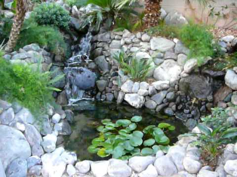 Diy waterfall and koi pond 1 year youtube for Diy koi pond