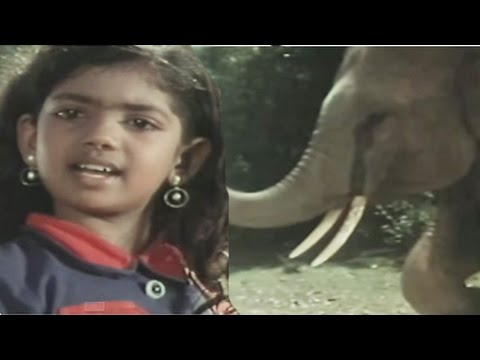 Children helps elephant in trouble,...