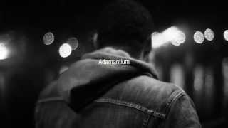 Fizzi Pizzi feat Ritzo : Adamantium (1947 #9) - Prod : Métronom