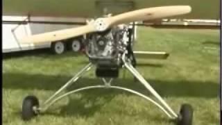 Backyard Flyer Swing Wing ultralight aircraft