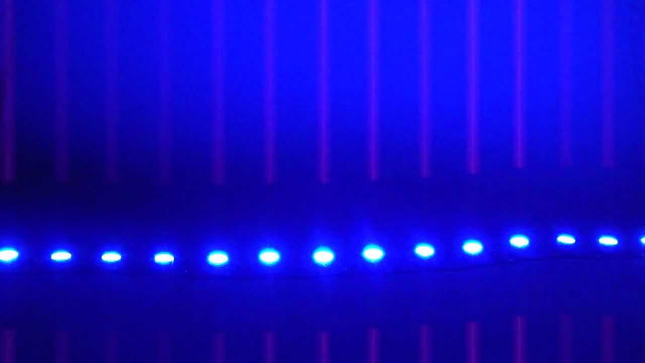 Led Lights Example Colorbright Super Blue Led Flexible