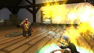 Pirate101 Privateer Skills and Animation Guide