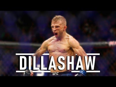 Tj Dillashaw - HIGHLIGHTS 2019 [HD]