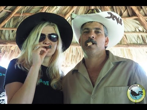 Kuba 2015 Cuba Havana Maria la Gorda Playa Larga | Centrum Nurkowe Gdynia Dive