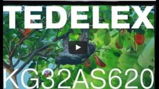 Tedelex KG32AS620 Отзывы Фото Обзор Телевизор 2016