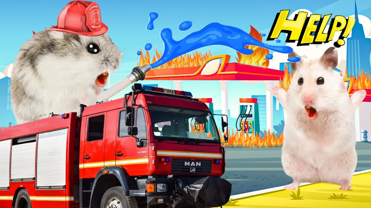Hamster, Don't Fire! Hamster Fire Fight Rescue Cartoon by Mr Hamster
