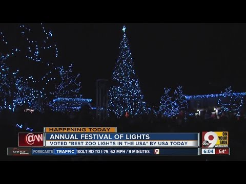 Cincinnati Zoo's Festival of Lights kicks off