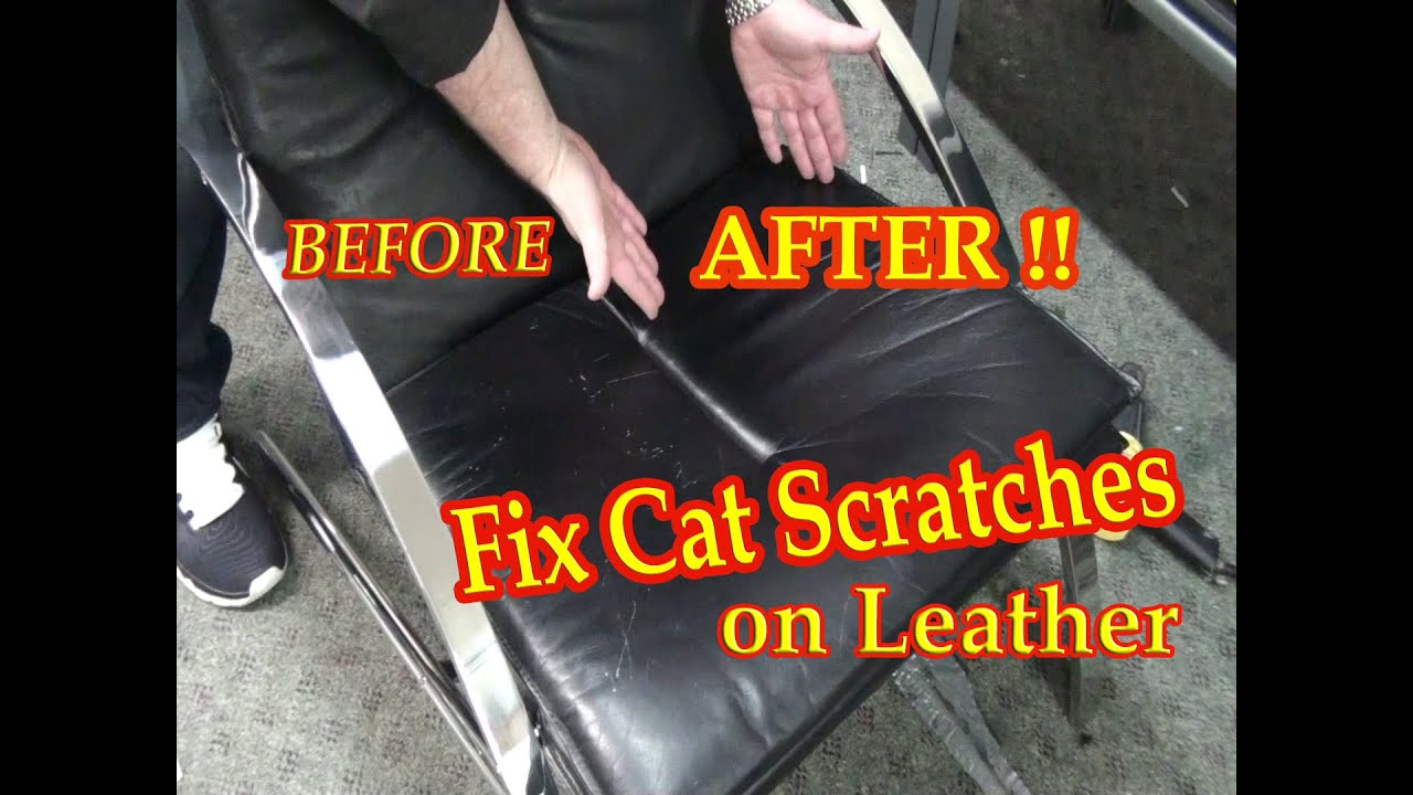 How To Repair A Leather Sofa From Cat Scratches 36 Table Fix On Black Chair Youtube