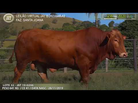 LOTE 032