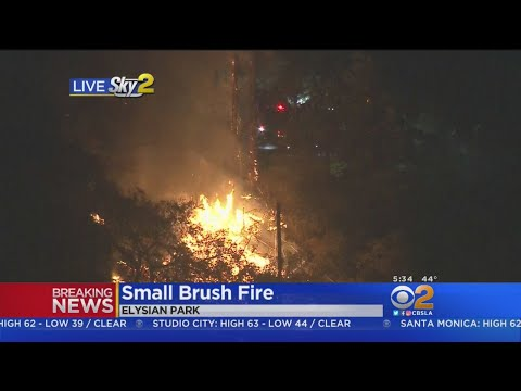 Small Brush Fire Spotted In Elysian Park