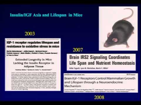 Professor Dame Linda Patridge - The New Biology of Aging - at Latsis conference Part_13-dm.m4v